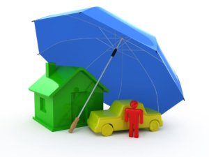 umbrella covering a house, person, and car.