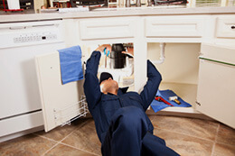 Local Plumbing Services for Garbage Disposal Repair